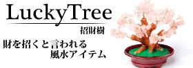 財を招く★招財樹
